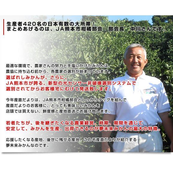 お一人様2箱まで!送料無料 熊本県より産地直送 JA熊本市 夢未来 極旨小玉みかん 5キロ(60個から80個)06
