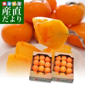 和歌山県より産地直送 JA紀の里 たねなし柿 合計4キロ 2キロ×2箱 (10玉から12玉入り×2箱) カキ かき 柿  送料無料