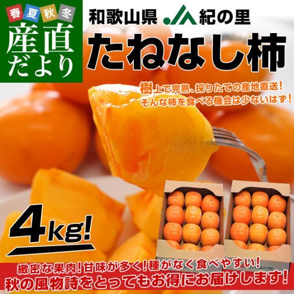 和歌山県より産地直送 JA紀の里 たねなし柿 合計4キロ 2キロ×2箱 (10玉から12玉入り×2箱) カキ かき 柿  送料無料02