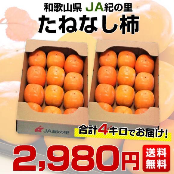 和歌山県より産地直送 JA紀の里 たねなし柿 合計4キロ 2キロ×2箱 (10玉から12玉入り×2箱) カキ かき 柿 送料無料03