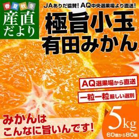 送料無料 和歌山県から産地直送 JAありだ 極旨小玉 有田みかん 5キロ(60個から80個)蜜柑 ミカン