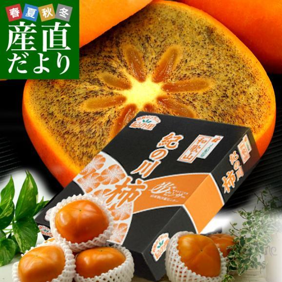 和歌山県より産地直送 JA紀の里 黒あま 2キロ(8玉から9玉) 送料無料 カキ かき 柿 御歳暮 ギフト01