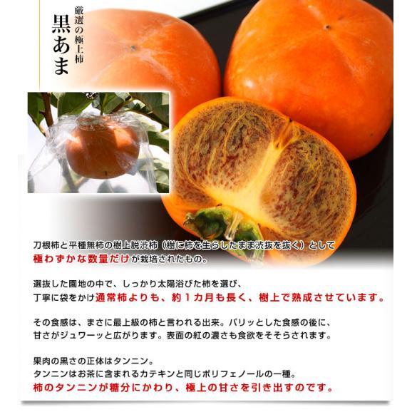 和歌山県より産地直送 JA紀の里 黒あま 2キロ(8玉から9玉) 送料無料 カキ かき 柿 御歳暮 ギフト04