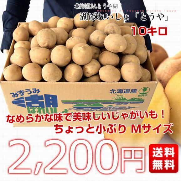 北海道から産地直送 JAとうや湖 じゃがいも 湖ばれいしょ「とうや」 Mサイズ 10キロ 馬鈴薯 ジャガイモ 送料無料03