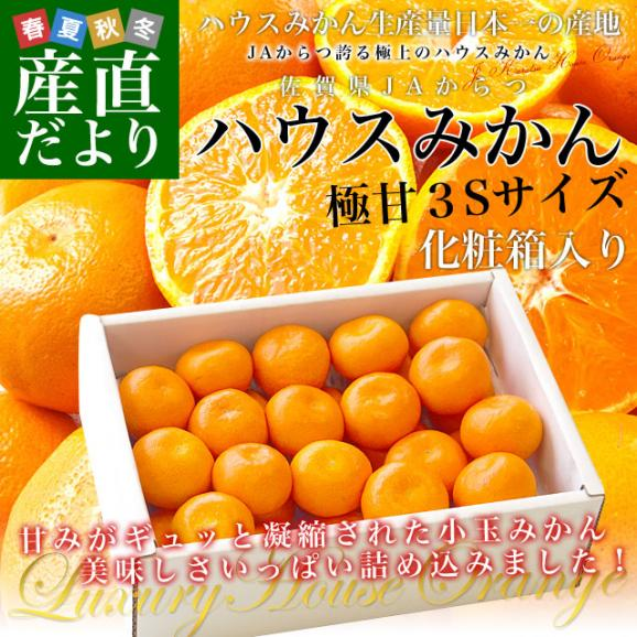 佐賀県より産地直送 JAからつ ハウスみかん 3Sサイズ  約1.2キロ(約30玉) 蜜柑 ミカン 送料無料 02