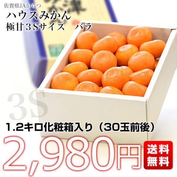 佐賀県より産地直送 JAからつ ハウスみかん 3Sサイズ  約1.2キロ(約30玉) 蜜柑 ミカン 送料無料 03