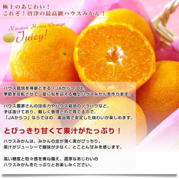 佐賀県より産地直送 JAからつ ハウスみかん 3Sサイズ  約1.2キロ(約30玉) 蜜柑 ミカン 送料無料 05