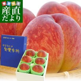 富士の国山梨の認証銘柄!超一流産地の一握りの特秀桃