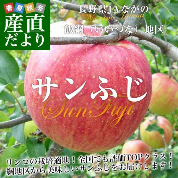 送料無料 長野県より産地直送 JAながの 飯綱地区 サンふじりんご 赤秀以上 5キロ (14玉から18玉)  林檎 りんご リンゴ02