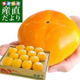 和歌山県より産地直送 JA紀の里 たねなし柿 大玉3Lサイズ 3.75キロ(14玉入) カキ かき 柿 送料無料