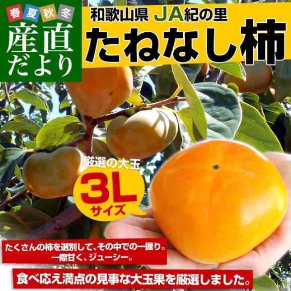 和歌山県より産地直送 JA紀の里 たねなし柿 大玉3Lサイズ 3.75キロ(14玉入) カキ かき 柿 送料無料02