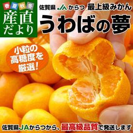 送料無料 佐賀県より産地直送 JAからつ うわばの夢 高糖度小粒みかん 約5キロ(65玉から80玉) 蜜柑 ミカン