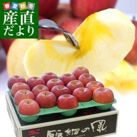 送料無料 長野県より産地直送 JAながの飯綱地区 サンふじりんご 最高等級:グルメ 5キロ (14玉から18玉) 林檎 りんご リンゴ