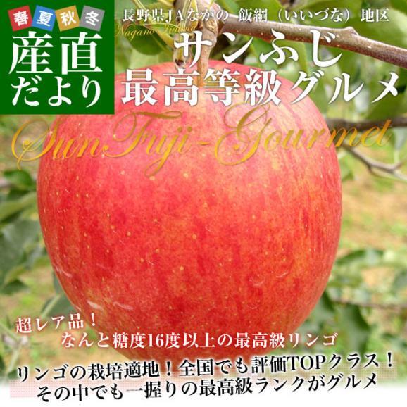 送料無料 長野県より産地直送 JAながの飯綱地区 サンふじりんご 最高等級:グルメ 5キロ (14玉から18玉) 林檎 りんご リンゴ02