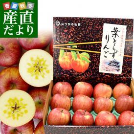 青森県より産地直送 JAつがる弘前 プレミアムサンふじ 葉型美人 (はかたびじん) 3キロ(10玉から13玉) 送料無料 林檎 りんご リンゴ お歳暮 御歳暮