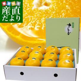 愛媛県より産地直送 JAにしうわ せとか 秀品 3LからLサイズ 3キロ (10玉から15玉) セトカ 西宇和 八幡浜 送料無料