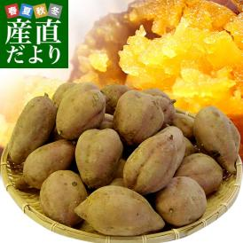 送料無料 鹿児島県より産地直送 種子島安納紅「みつ姫」 約5キロ さつまいも 唐芋 からいも カライモ