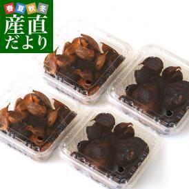送料無料 北海道より産地直送 滝本農場 手作り熟成黒にんにく(割れ品) 約80gパック×4セット