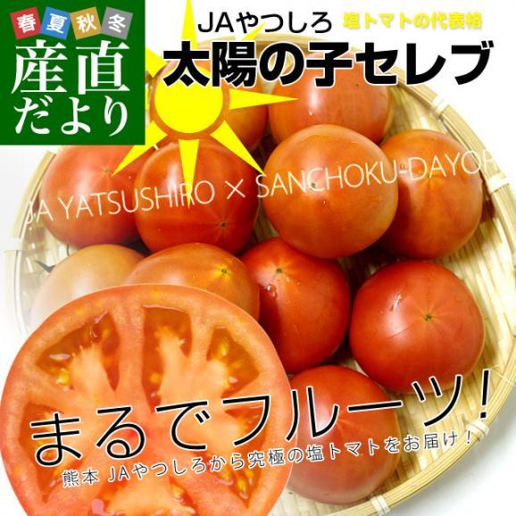 熊本県より産地直送 JAやつしろ 太陽の子セレブ フルーツトマト 約1キロ MからSサイズ(11玉から16玉) とまと 送料無料02