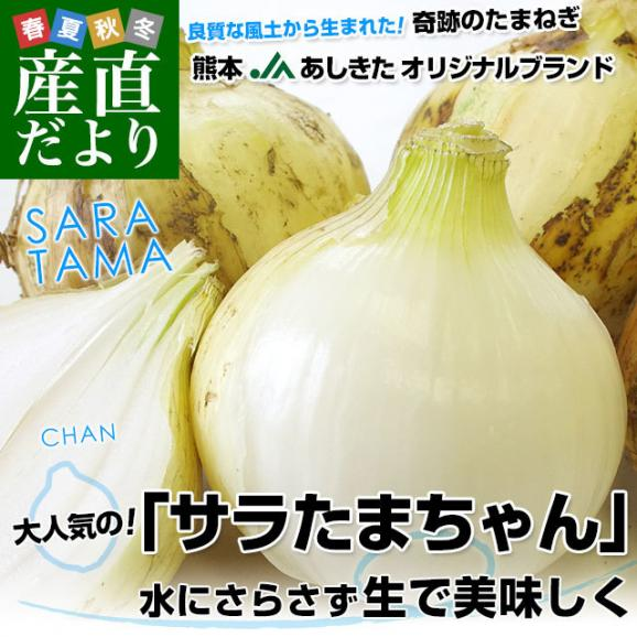 熊本県より産地直送 JAあしきた サラたまちゃん LAサイズ 約5キロ (15玉前後) 送料無料 玉葱 タマネギ サラ玉 さらたま さらタマ02