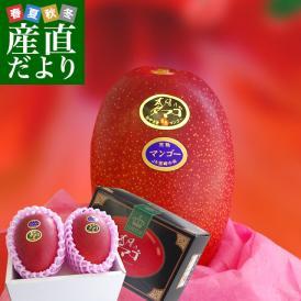 4月発送の希少な太陽のタマゴ!最上級の宮崎マンゴー・圧巻の存在感!