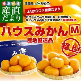 佐賀県 JAからつ ハウスみかん Mサイズ 約2キロ(20玉前後)