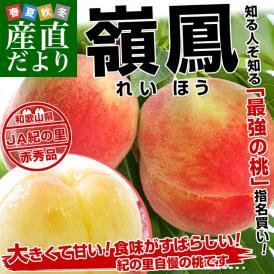 和歌山県より産地直送 JA紀の里 嶺鳳(れいほう) 赤秀品 約1.8キロ(6玉から8玉)桃 もも