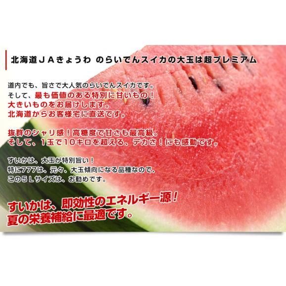 北海道より産地直送 JAきょうわ らいでんスイカ 超特大 優品5Lサイズ 10キロ以上 すいか 西瓜 送料無料05