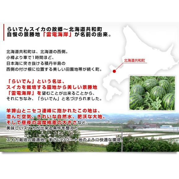 北海道より産地直送 JAきょうわ らいでんスイカ 超特大 優品5Lサイズ 10キロ以上 すいか 西瓜 送料無料06