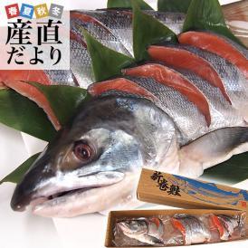 北海道産 姿切り身 大型の鮭 まるごと1尾分 3キロ 北海道サケ シャケ 秋鮭