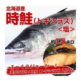 送料無料 北海道産 時鮭(トキシラズ) 塩 約1.5キロ