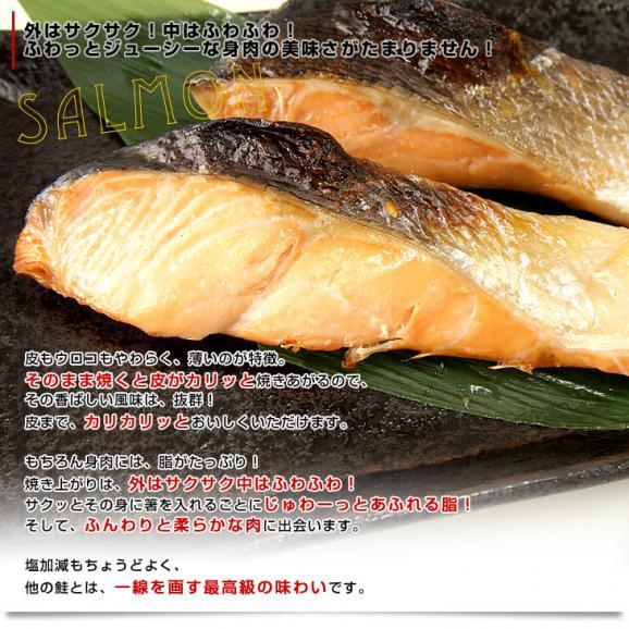 送料無料 北海道から直送  北海道加工  時鮭(トキシラズ) まるごと1尾 大型2.5キロ (ロシア産) ときさけ トキサケ05