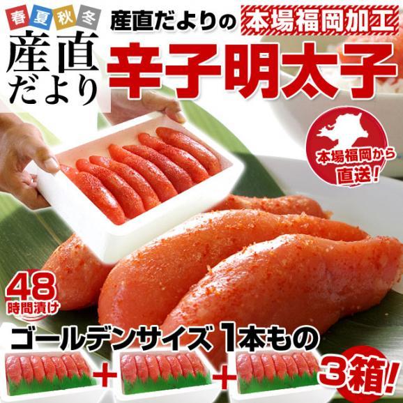 福岡加工 辛子明太子 ゴールデンサイズ 極太1本もの 約280g(6本から7本)×3箱 送料無料 めんたいこ02