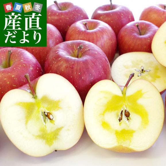 岩手県より産地直送 JAいわて中央 完熟サンふじりんご じゅくりん 5キロ(16玉から23玉) 林檎 リンゴ 送料無料01