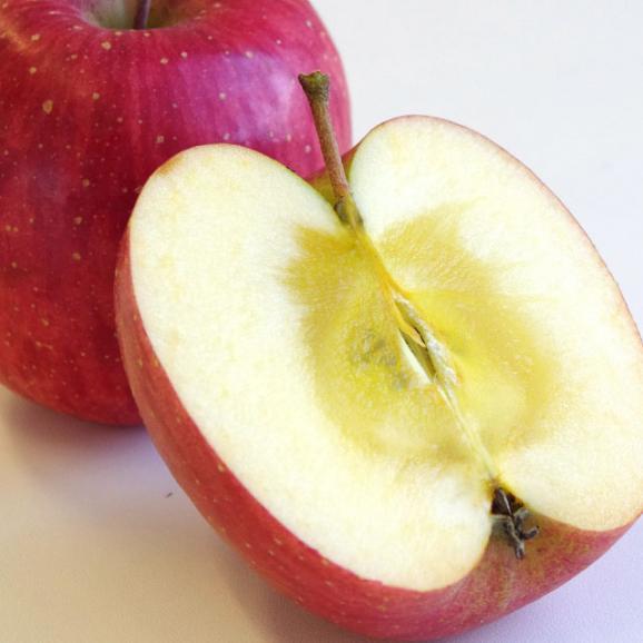 送料無料 岩手県より産地直送 JAいわて中央 完熟サンふじりんご じゅくりん 5キロ(16玉から23玉) 林檎 リンゴ お歳暮 御歳暮04
