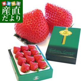 福岡県より産地直送 JAくるめ あまおういちご EX:最上級品エクセレント 420g(12粒から15粒) 苺 いちご イチゴ ストロベリー