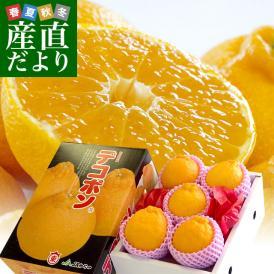佐賀県より産地直送 JAからつ デコポン 1.2キロ化粧箱(5玉から6玉入り) 送料無料 産直だより 唐津 でこぽん 柑橘 みかん オレンジ