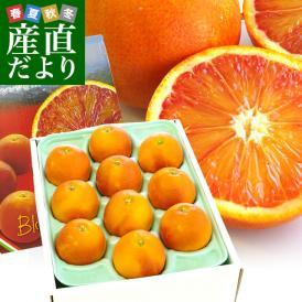 送料無料 愛媛県より産地直送 JAえひめ南 ブラッドオレンジ 優品 3Lから2Lサイズ 2キロ(8から10玉) 柑橘 おれんじ