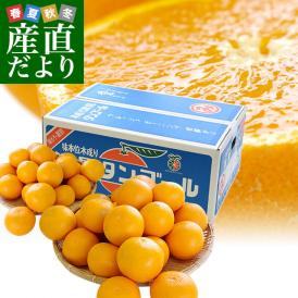 送料無料 愛媛県より産地直送 JAにしうわ三崎共選 清見オレンジ 小玉 MからSサイズ 5キロ( 35から42玉前後)