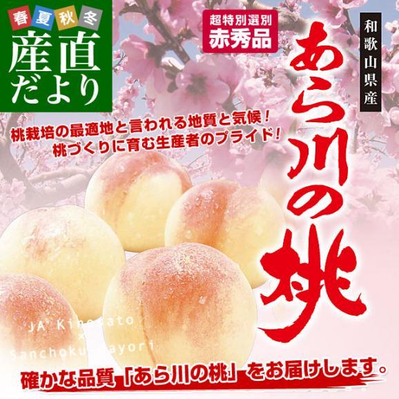 和歌山県より産地直送 JA紀の里 あら川の桃 赤秀品 1.8キロ (6玉から8玉) 送料無料 桃 もも あらかわ02