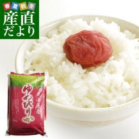 奇跡の北海道米!圧倒的な旨さが詰まってます。今や日本を代表する最高級銘柄!ゆめぴりか!