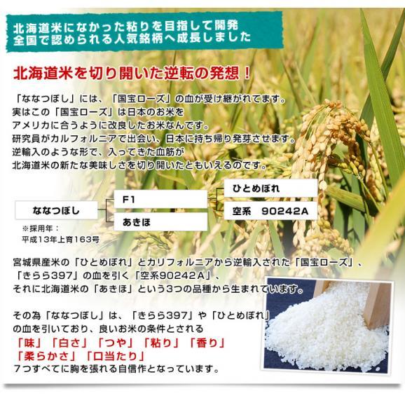 令和元年産 <特A> 北海道産 ななつぼし 5キロ お米 北海道米 送料無料06