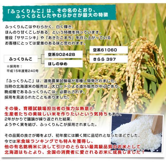 令和元年産 <特A> 北海道産 ふっくりんこ 10キロ お米 北海道米 送料無料06