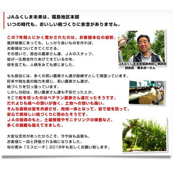 福島県より産地直送 JAふくしま未来 ミスピーチ「黄金桃」 約2キロ(5玉から8玉) 桃 もも 送料無料06