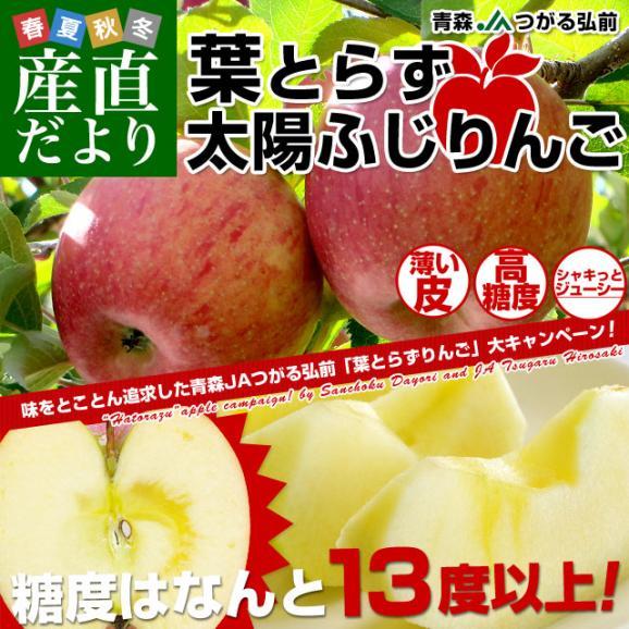 お一人様2箱まで! 送料無料 青森県より産地直送 JAつがる弘前 葉とらず太陽ふじりんご 3キロ(9玉から13玉) 糖度13度以上 林檎 リンゴ02