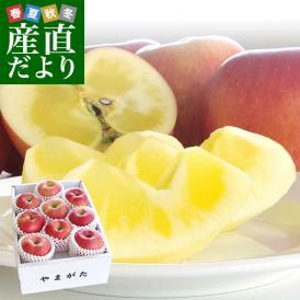 送料無料 山形県より産地直送 山形朝日町APPLES 蜜入りんご「こうとく」 特秀 2キロ(7玉から12玉) 林檎