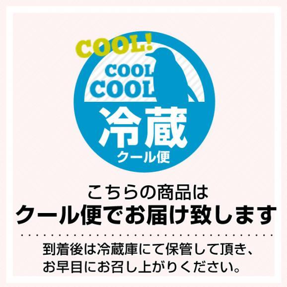 栃木県より産地直送 JAおやま スカイベリー 約300g×2P(6から12粒×2P)いちご イチゴ 苺  ※クール便発送 送料無料06