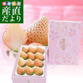 熊本県より産地直送 西谷農園の白いちご 淡雪(あわゆき) 約400g(9粒から15粒)化粧箱入り 苺 イチゴ 送料無料