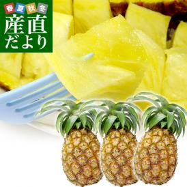沖縄生まれのパイナップル、桃のような香り人気の絶品味!