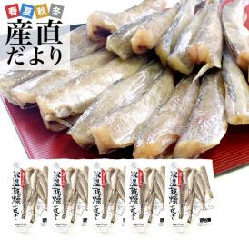 送料無料 北海道産 コマイ(氷下魚)の氷温乾燥一夜干し 約1キロ(200g×5袋)